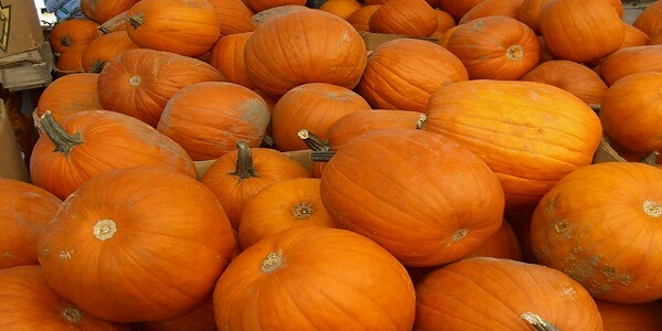 3 tips do you know the benefits of pumpkin seeds…