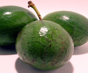 Avocado is not only beautiful but also beneficial for health
