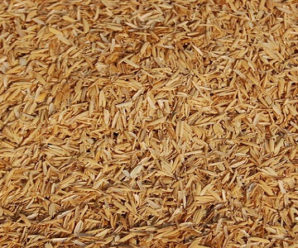 Advantages and Disadvantages of Eating Rice – Know Sugar Free Rice, Type of Rice