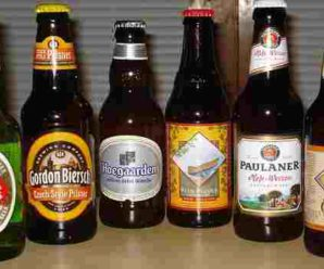 Health Benefit of Drinking Beer