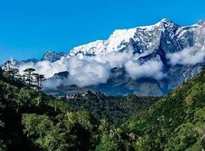 Medicinal herbs like Jambu, Choru, Kapoor Kachri, Kutki, Kootha, Jatamansi are rapidly extinct from the higher Himalayan regions of Devbhoomi Uttarakhand.