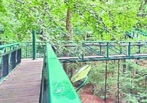 The first Nature Walkway of the country has been built in Kuveshi village in Karnataka state.