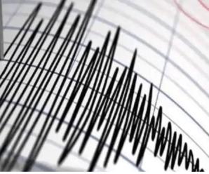 Earthquake measuring 4.0 hits Pithoragarh in Uttarakhand.