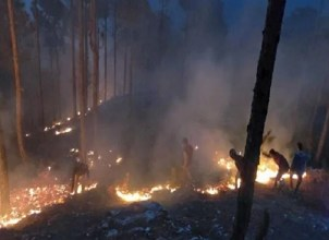 Massive fire in Uttarakhand: Nearly 105 hectares of forest burned in 12 hours.